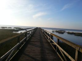 Schobüller Brücke mit Badesteg