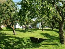 Obstgarten im Feriendomizil Forellenhof Riesewohld